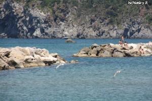 A Forio d'Ischia operazione Spiagge Pulite