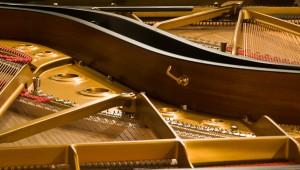 Giardini La Mortella di Forio d'Ischia - Presentazione della stagione musicale Autuno 2013