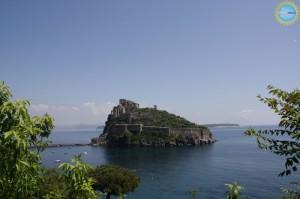 Ischia In Itinere si presenta con 'Due secoli di scavi e di libri'