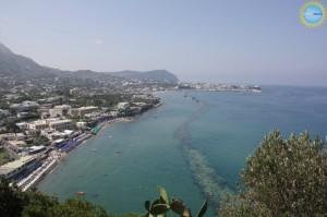 Ischia BioDiving Weekend dal 15 al 17 novembre