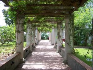A Villa Arbusto a Lacco Ameno d'Ischia il festival dell'Integrazione