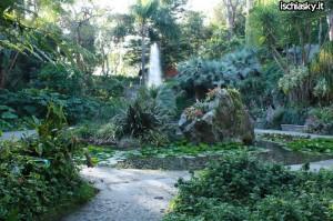 Apertura straordinaria dei Giardini La Mortella di Forio d'Ischia in Inverno