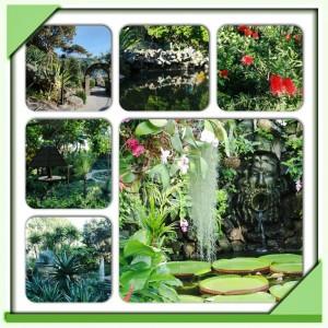 I Giardini La Mortella a Forio d'Ischia dal 1 aprile si lasciano conquistare dalla primavera