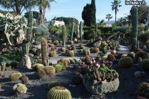 Ai Giardini Ravino di Forio d'Ischia la mostra di Mariano Pracella
