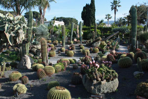 Eventi 2009 - Giardini Ravino tutti gli appuntamenti serali
