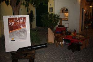Eventi 2010 - Artischia Agrischia