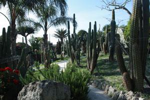 Eventi 2009 - Bellissime serate firmate Giardini Ravino