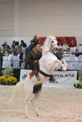 Ischia - Pithecusa Galà 09. Amore, passione, Arte Equestre.