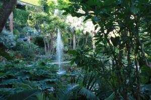 Ischia - Ivana Bordonaro ai Giardini La Mortella