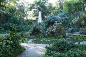 Lukasz Trepczynski ai Giardini La Mortella di Forio d'Ischia