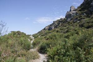 Eventi 2012 - Il quindici agosto nei Boschi della Falanga