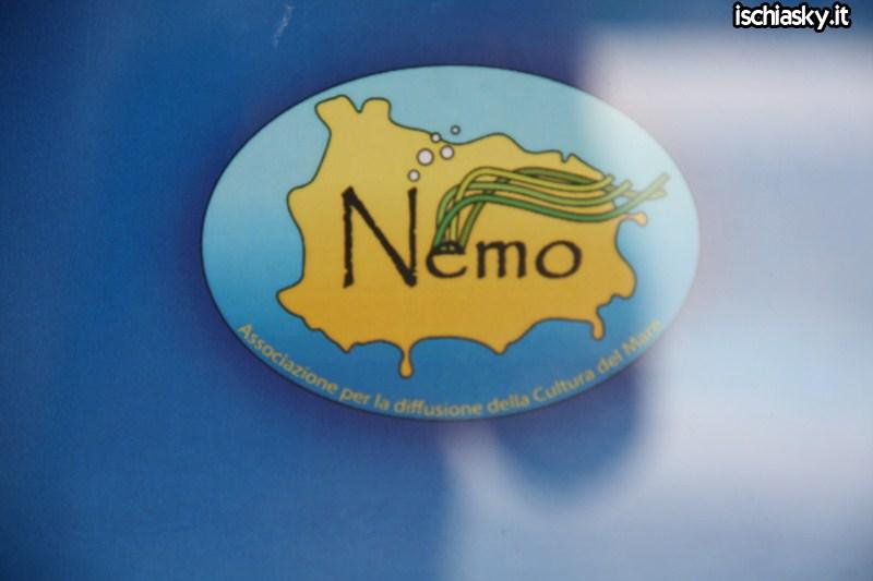 A lezione da Nemo a Sant'Angelo