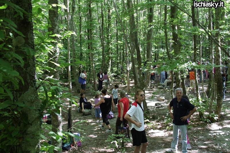 Il 15 agosto nei boschi della Falanga 2011