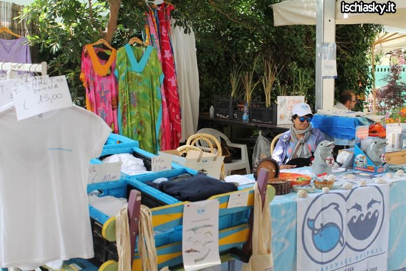 Ipomea del Negombo 2014