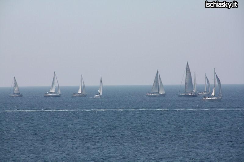 Regatta ESCP Europe Forio d'Ischia